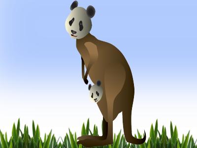 pandaroo panda kangaroo information for kids